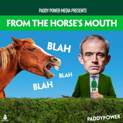 paddy ruby horses mouth